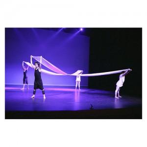 Schoolvoorstelling Dansstudio Dentro in theater COOL